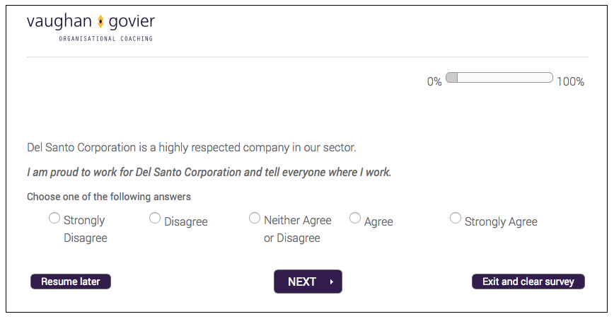 Engagement Survey Screenshot
